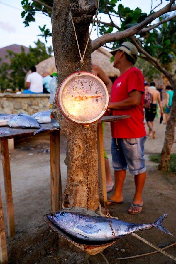 taganga-pescadores