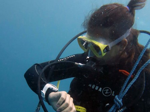 Advanced course – E-learning & Dives