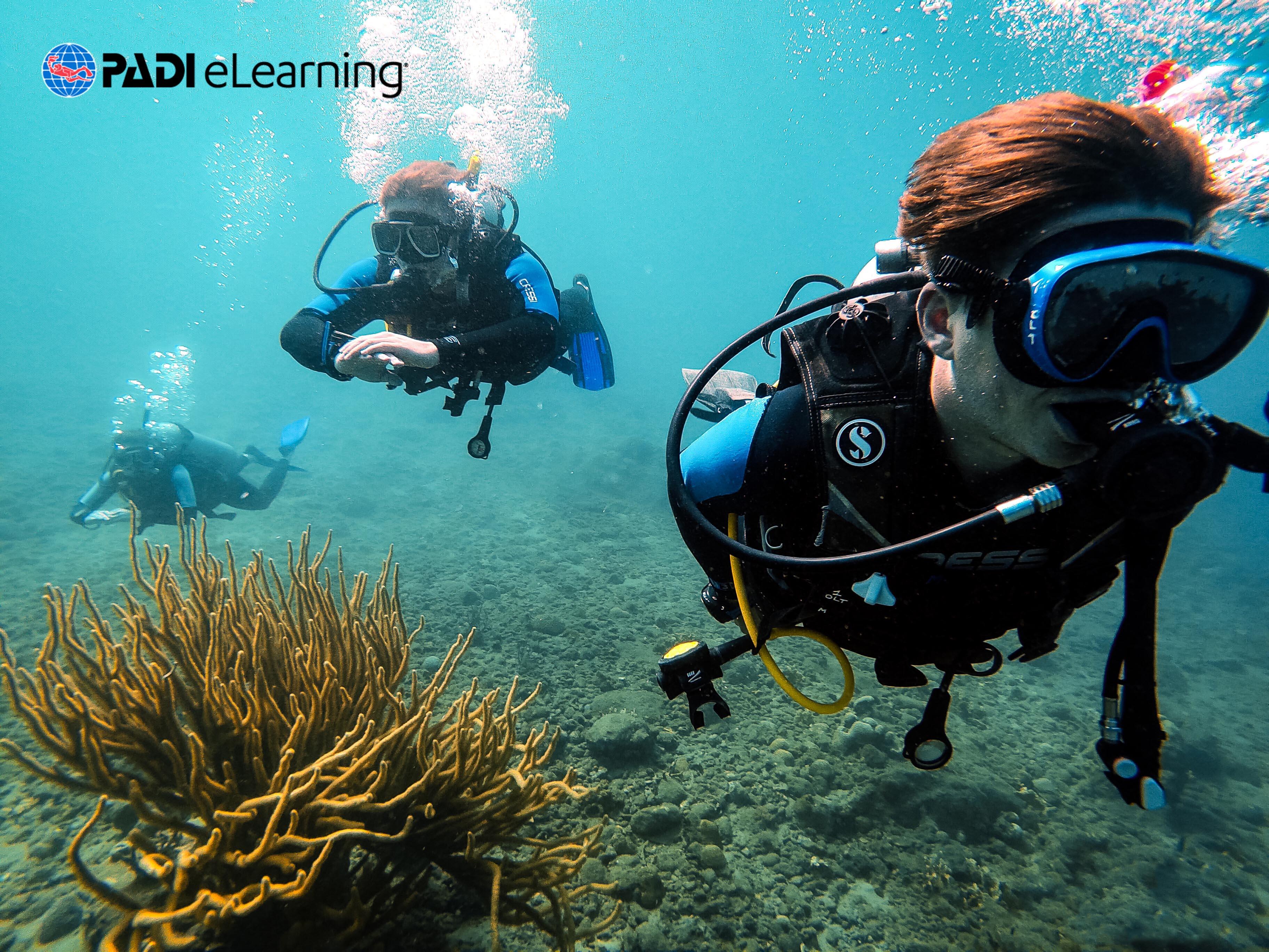 PADI Divemaster – E-Learning