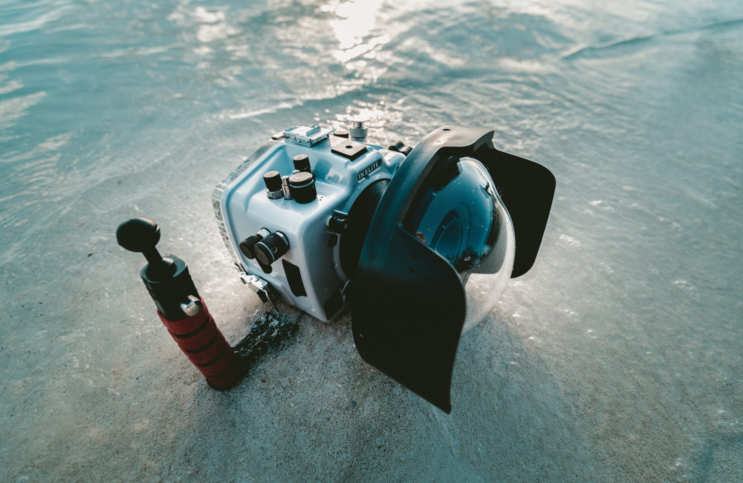 Digital Underwater Photography Specialty Course