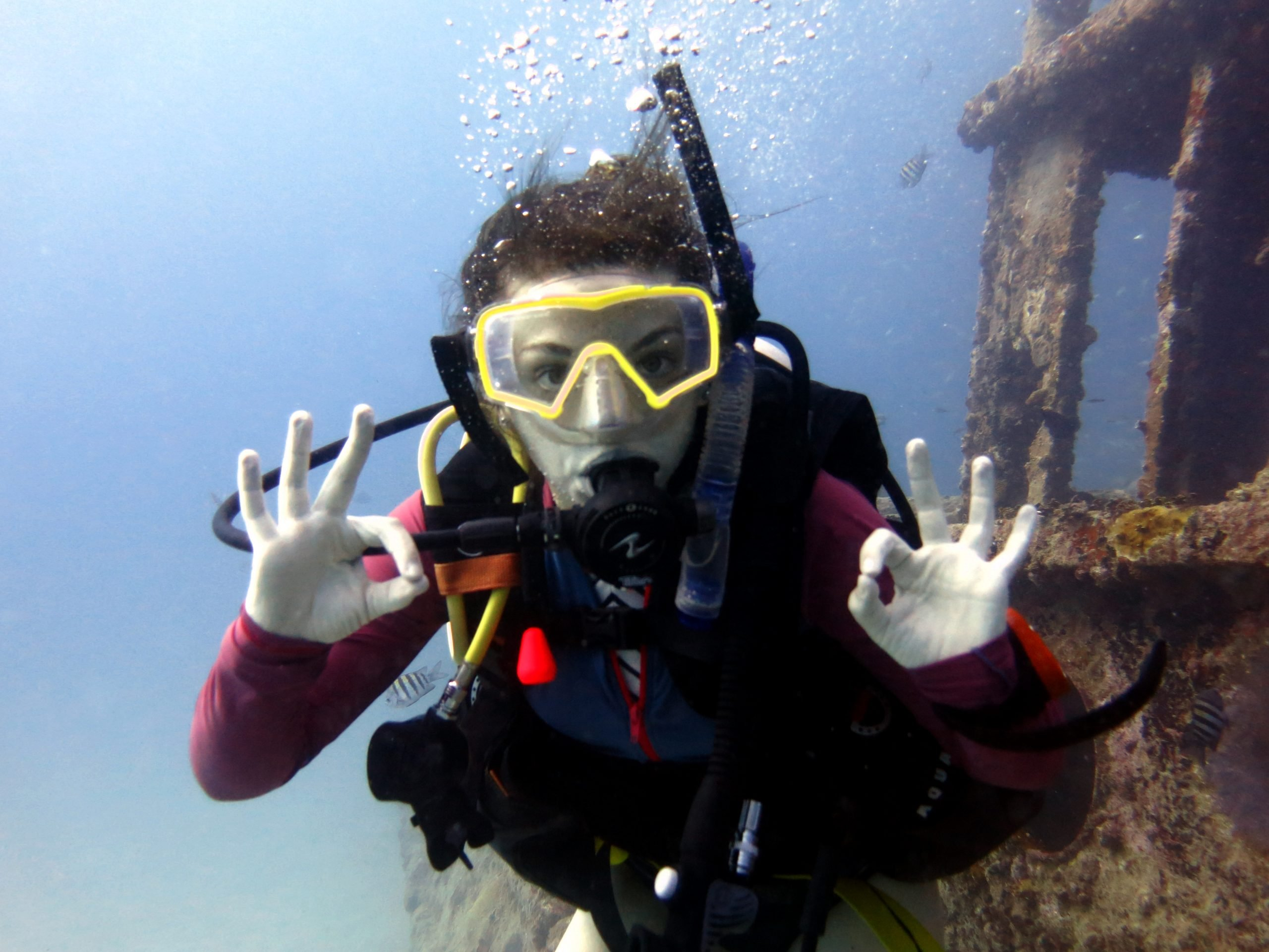 Wreck Diver Specialty Course